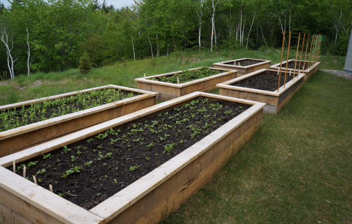 Jamieson Community Correctional Centre gardening project
